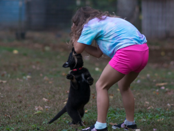 Learning what not to do around puppies