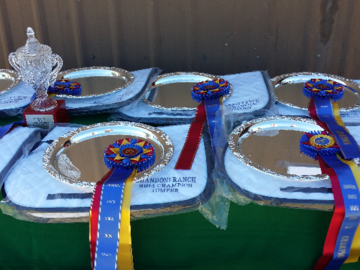 Prizes   Shandoni Ranch Horse Shows