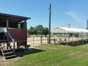 Horse Show area    Shandoni Ranch