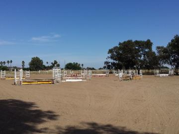 Jumper Ring   Shandoni Ranch