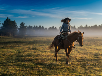 Horse and cowgirl at dawn.