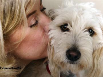 #AnimalBeatSF:Instagram interviews with animal lovers