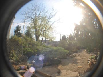 Our backyard paradise!