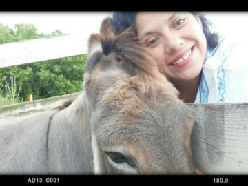 Every girl loves a donkey!