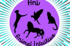 Request Quote: Ani Animal Intuitive - Boca Raton, FL
