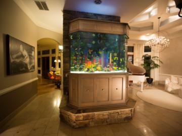 2chainz Atlanta skyline aquarium