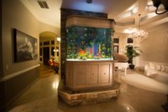 Request Quote: Aquatic Life Designs , LLC - Mableton, GA