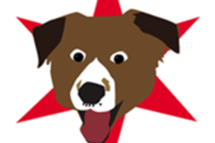Request Quote: Second City Pet Care - Chicago, IL