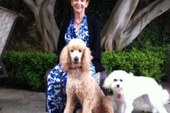 Request Quote: Dr. Suzanne Engelman - Laguna Beach, CA