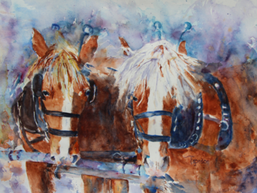 'Team Mates' - a pair of workhorses in harness