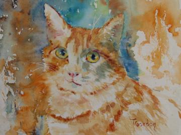 'Charlie' a cat