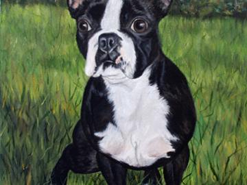 Mia - Custom Dog Painting