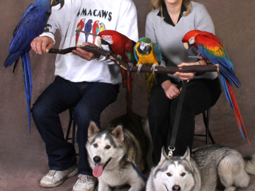 A portrait of a couple with their birds and dogs