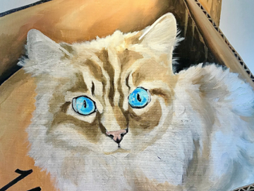 16x16 pet portrait
