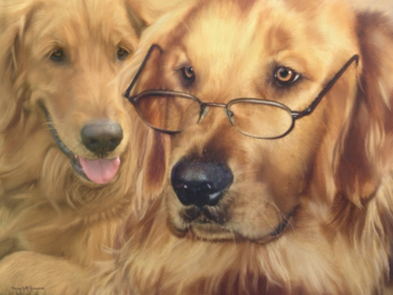 Indy the Golden Retriever (digital on canvas)