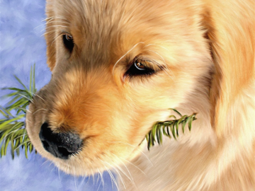 Mystic the Golden Retriever (digital painting on canvas)
