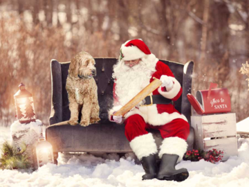 Doodle and Santa