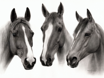 Horses oil painting on paper