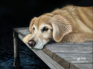 """16""""x20"""" Scratchboard and ink portrait of a Golden Retriever.  This is a drawing, NOT A PHOTO!"""