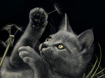 """10""""x8"""" scratchboard of a kitten.  This is a drawing."""