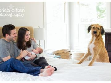 Dog Photo Bomb by Erica Aitken