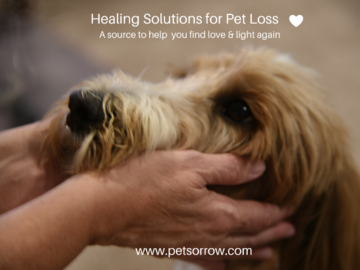Check out our website : www.petsorrow.com