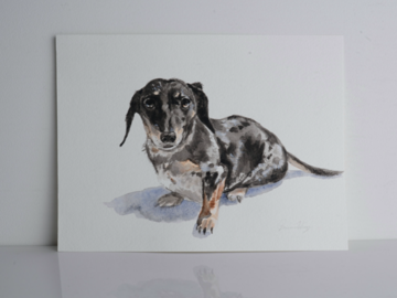 Wiener dog pet portrait painting