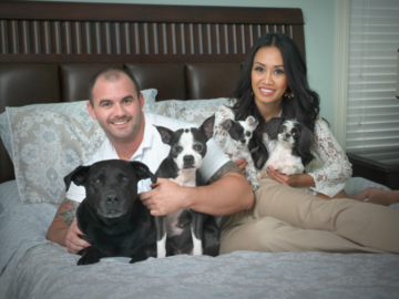 In Home Portrait of 4 Dogs & Their People