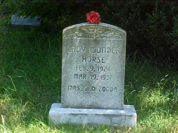 Famous Horse Resident
