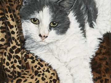 Acrylic painting of a gray & white cat