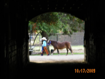 Grand-daughter & pony going by one of the aisles