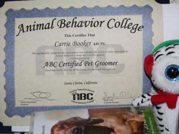 grooming certification