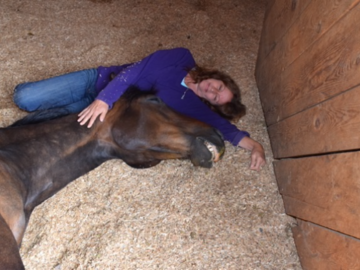 Reiki healing with a beautiful horse
