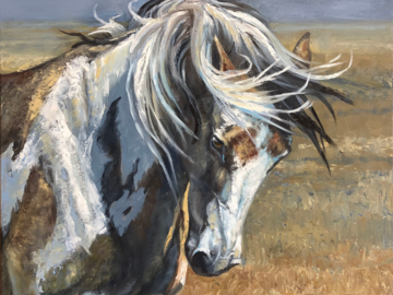 """Wild Mustang oil painting 24"""" x 24"""""""