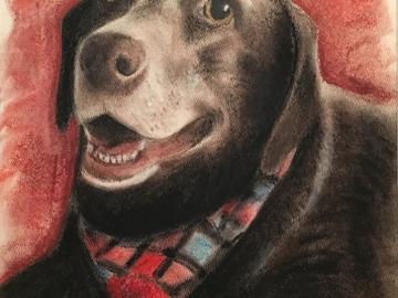 Happy mature dog