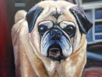 Portrait of Jake the Pug