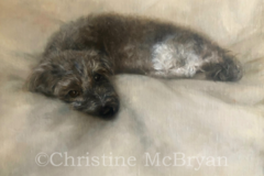 Request Quote: Christine McBryan Art, New York, NY