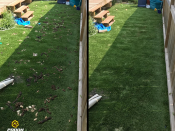 Summer service before and after picture