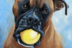 Request Quote: Custom Pet Portraiture - Minneapolis, MN