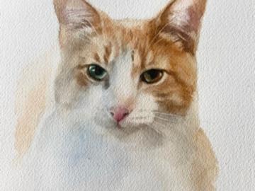 Tommy 8x10 watercolor sketch