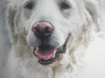 Bruce 8x10 watercolor sketch