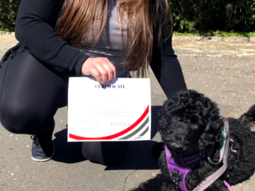 Graduate Rooney from Canine Partnership Class