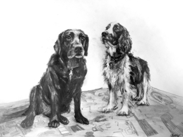 graphite on paper 2015
