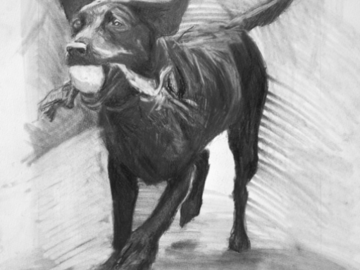 Angie, graphite on paper 2012