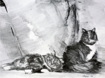 """Socks and Gray Graphite on paper 11"""" x 14"""" 2012"""