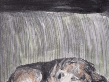 """Cecil Graphite on paper with watercolor 9"""" x 12"""" 2012"""