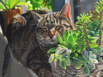 Duke Dreaming in the Succulents | Oil on Wood Panel | 10x10