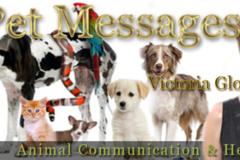 Request Quote: Animal Communication and Healing - Phoenix, AZ
