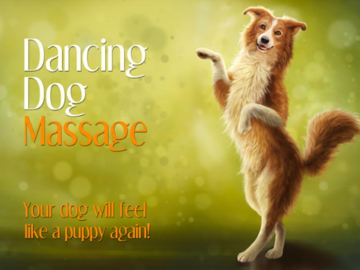 Dancing Dog Massage Logo