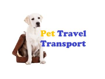 Pet Travel Transport Logo